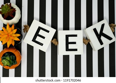 Eek Halloween phrase letters on fun black and white stripe background and pumpkin succulents cactus. Useful for Halloween projects and headers