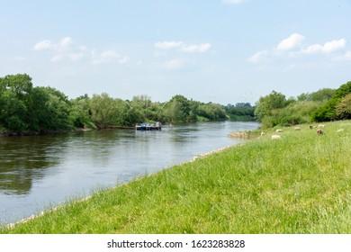 Eel fishing boat on the river Weser near Drakenburg in spring