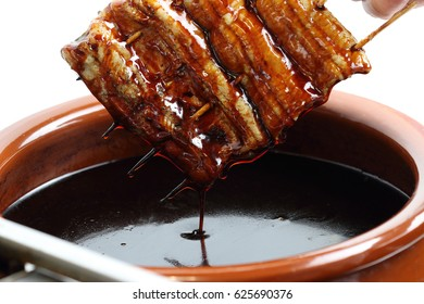 Eel food
