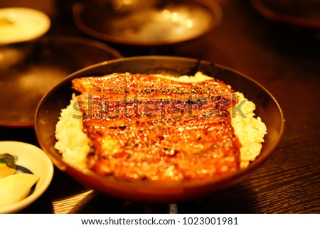 https://image.shutterstock.com/image-photo/eel-japan-450w-1023001981.jpg
