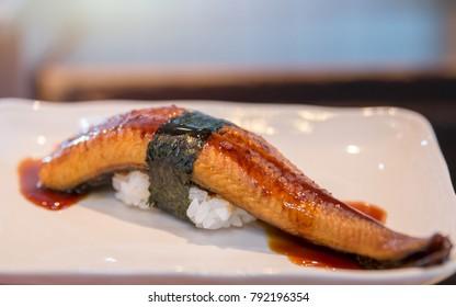 Eel sushi. Japanese Cuisine, Sushi Unagi. Unagi Nigiri Sushi or Eel Sushi. Japanese eel grilled.