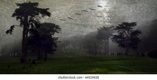 Eerie landscape with trees, birds, fog and lots of grunge