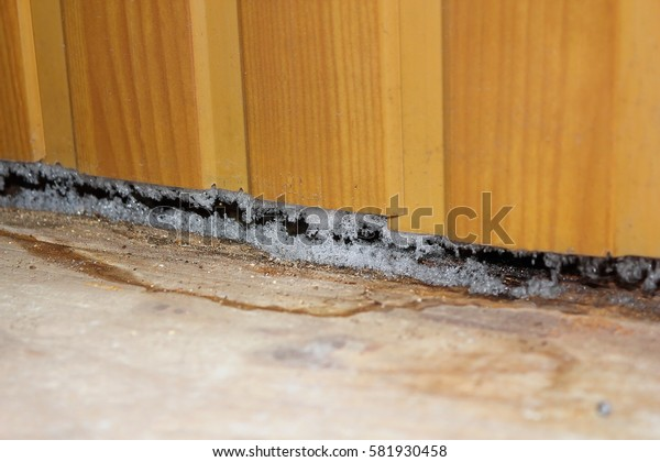 effects of plastic paneling on old house, damp from the walls transforming to ice