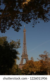 effel tower is surrounded with trees . It can be a nice view