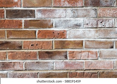 Efflorescence on a red brick wall