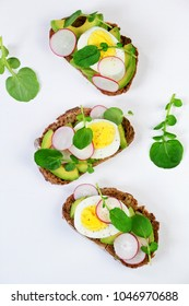 Egg and avocado sandwich isolated. Avocado and egg toast on the white background. Top view toast