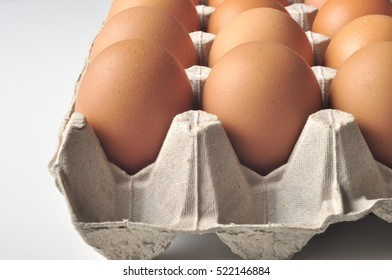 Egg in Cardboard egg tray with white background