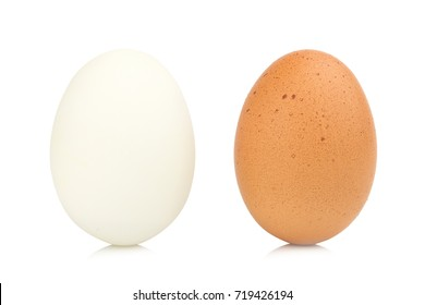 egg chiken and egg duck isolated on white background.