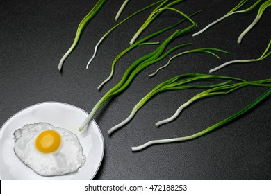Egg , chives (green onio) and white plate look like sperm competition, Spermatozoons floating to ovule.Dark stone background