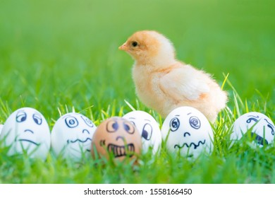 Egg with drawn Smile, sad, panic, sick and crying egg in expression face. Cute yellow fluffy chick on green grass in garden.Threat of depression