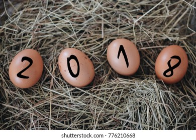 egg in happy new year concept,2018