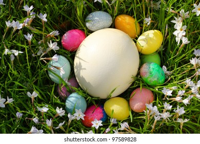Egg Hunt. A birds-eye view of Easter Eggs nestled around a large Ostrich Egg in the grass