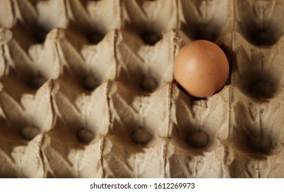An egg inside a traditional egg container. Concept to describe food consumption in traditional markets. - Shutterstock ID 1612269973