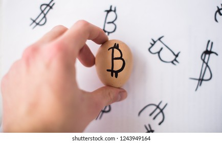 Egg with logo bitcoin in hand. The concept of Crypto-currency.