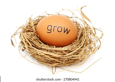 Egg in nest with word on it - grow
