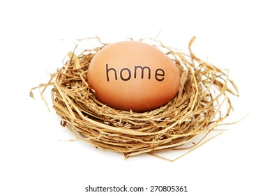 Egg in nest with word on it - Home