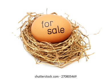 Egg in nest with word on it - for sale