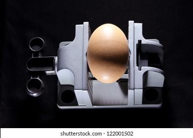 Egg on Vise in Black Background