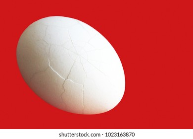 Egg on the white background, natural food