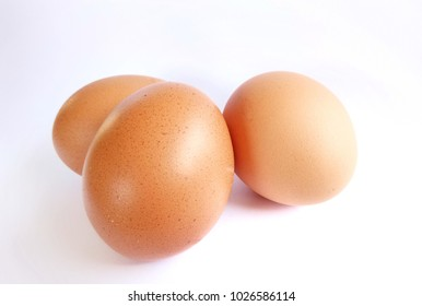 Egg Protein is an essential nutrient for the body