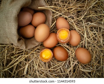 Egg protein is a widely used to cook almost anything.