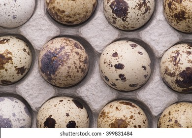Egg, quail eggs. isolated on a white background.