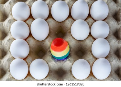 Egg with rainbow colors of the LGBT flag standing out from crowd of plenty identical white eggs in carton box. International Day Against Homophobia concept.