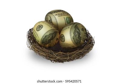 Egg shaped money in nest on white background