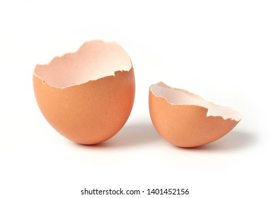 Egg shell isolated on white