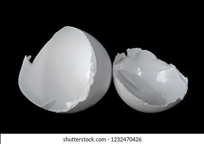 Egg shell on the black background