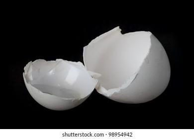 Egg shell on dark background