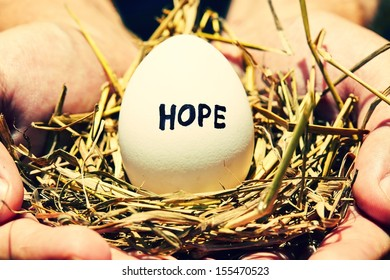Egg - symbol of hope and new life in human palm.