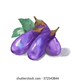 eggplant . watercolor painting isolated on white background