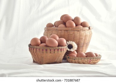 eggs in basket filled vintage isolated on white background.