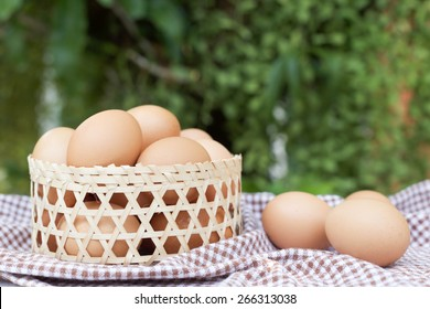 Eggs in the basket on green background