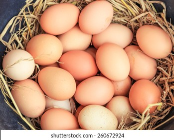 eggs in the basket,eggs of hen in nature