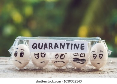 Eggs in a box, quarantine. Eggs are considered when passing quarantine at the border