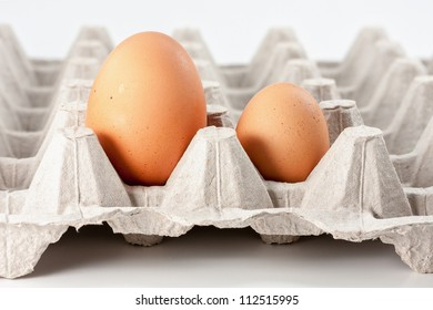 Eggs in carton, big and small