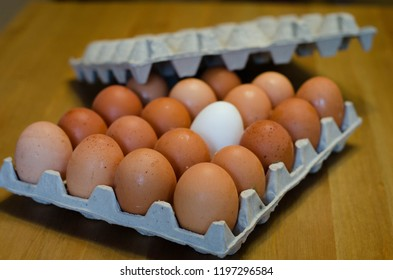 Eggs in a carton on a wooden table. One egg is different. It is white and the others are brown.