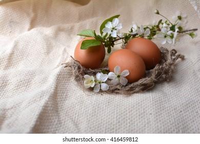 eggs, easter,