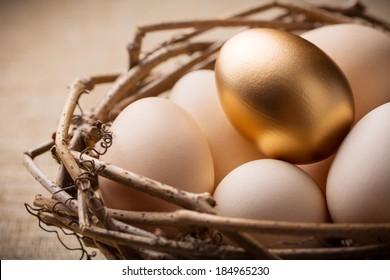Eggs in nest on linen fabric close-up
