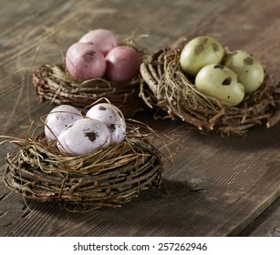 Eggs in nest on wood