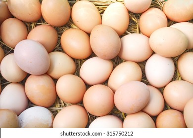 eggs on eggs background
