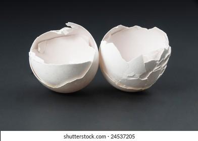 Egg's shell