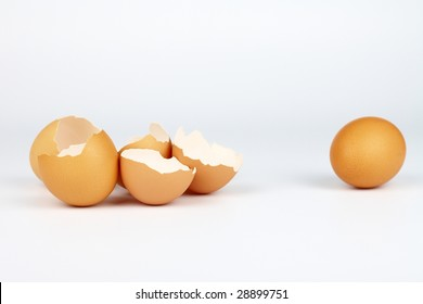 eggs shells and single safe egg over white