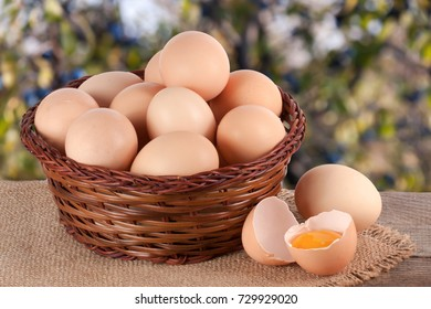Hen Eggs Basket Images, Stock Photos & Vectors