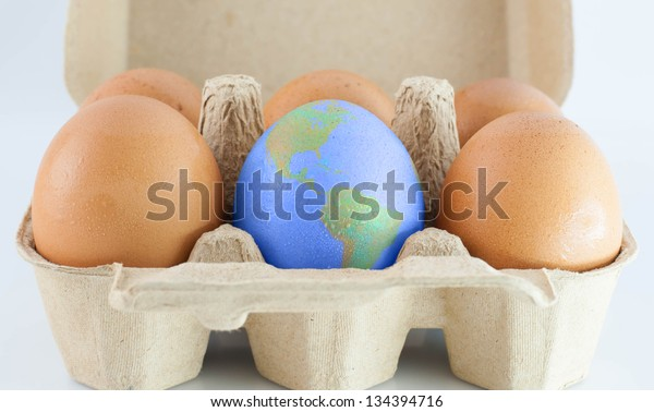 eggs with world earth texture in the package  isolated on white