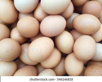 Eggs.chicken eggs.
