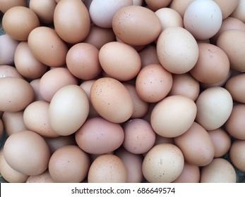Eggs,Chicken eggs.