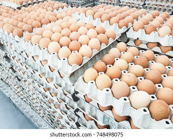 Eggshell at super market